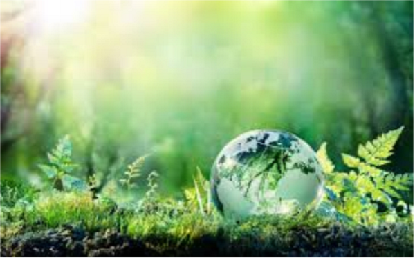 Planet Green Online