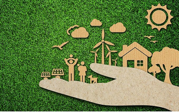 Choose Hemp; Live sustainably