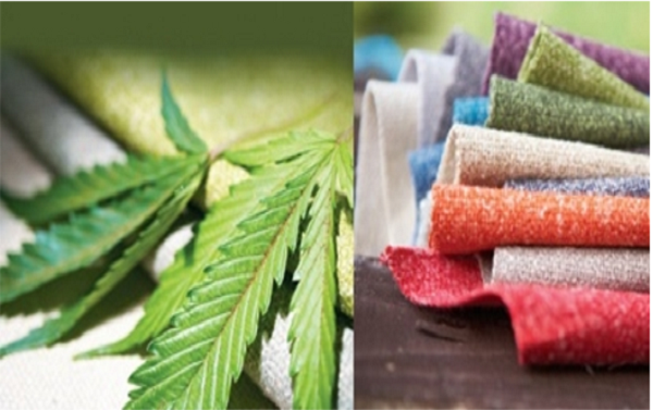 All things green for a green planet- Hemp Fabrics