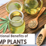 Top 6 Nutritional Benefits of Hemp Plant?