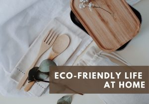 Eco-Friendly living tips for life at home