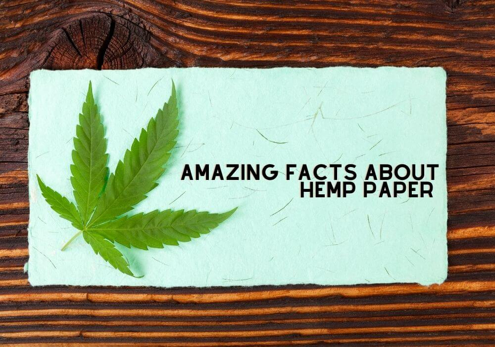 Amazing facts about hemp paper